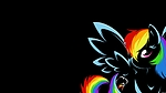 13409-rainbow-dash-ponies.jpg